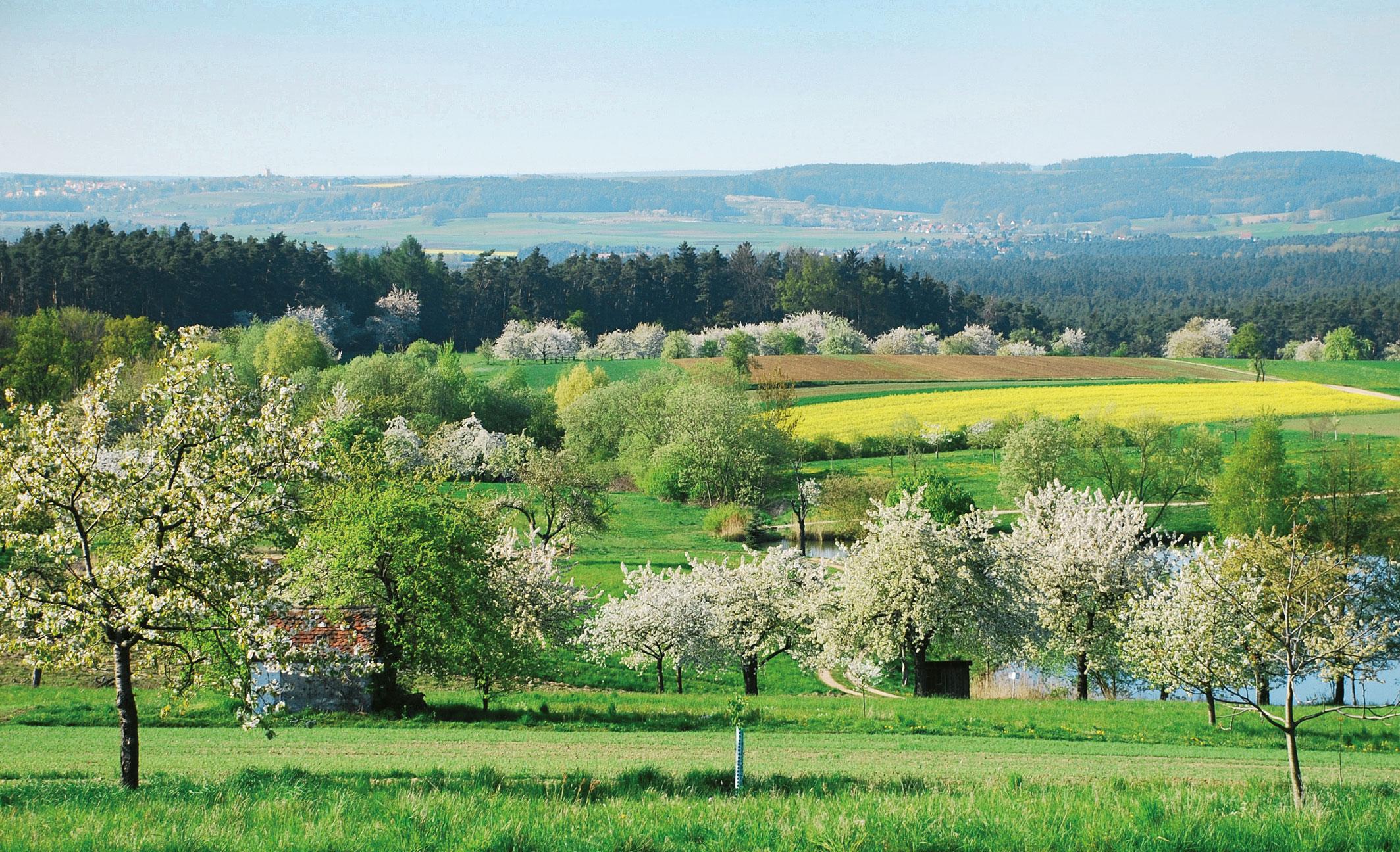 Landschaft braucht Pflege - Landschaftspflegeverband Mittelfranken